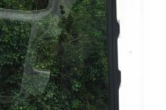 T5-Barn-Door-Window-close-up
